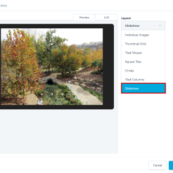 Adding a Gallery Slideshow to a Post in order to display Altofocus' Header Slideshow