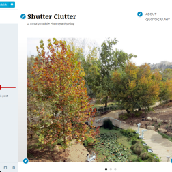 Altofocus theme Content Options showing display of Gallery Slideshow in header and Featured Image in single post enabled