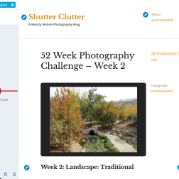 Altofocus theme Content Options showing display of Gallery Slideshow in post and Featured Image in single post disabled